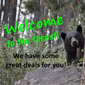 MAKE an OFFER .... we can BEARLY wait!